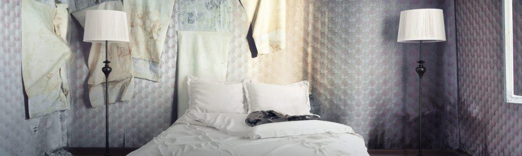 Moldy Bedroom Restoration Job