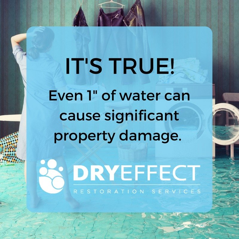 Dry Effect flood damage