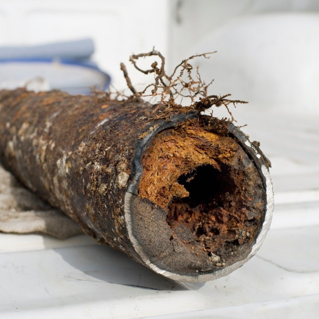 Clogged Drain Pipe Picture Id180815395 Web Dry Effect