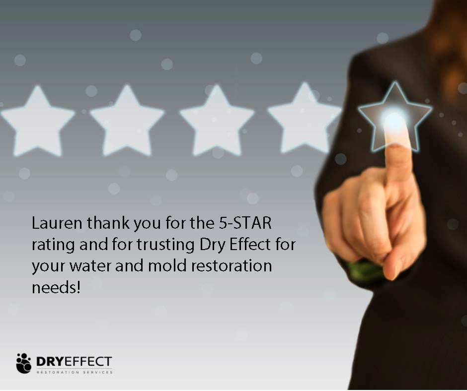 Dry Effect 5-STAR reviews