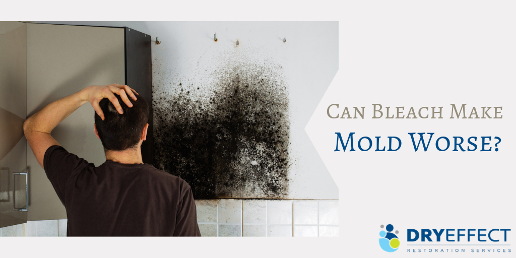 Can Bleach Make Mold Worse - DryEffect