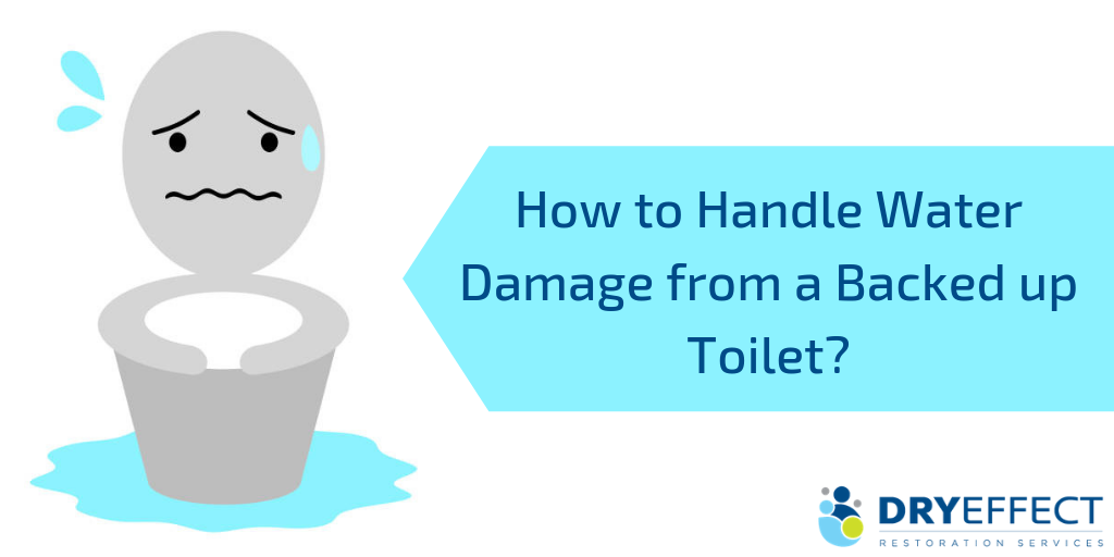 How to Handle Water Damage from a Backed up Toilet - DryEffect