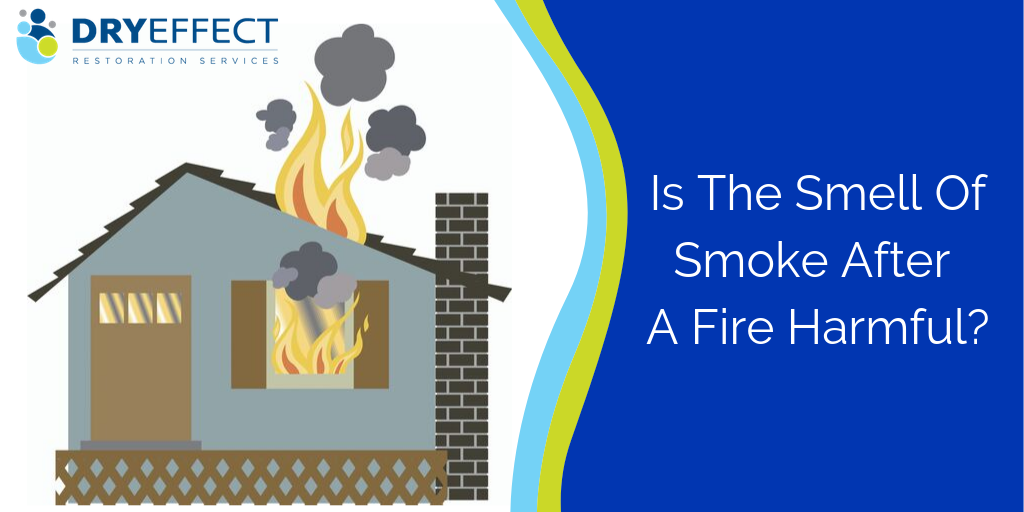 Is The Smell Of Smoke After A Fire Harmful?