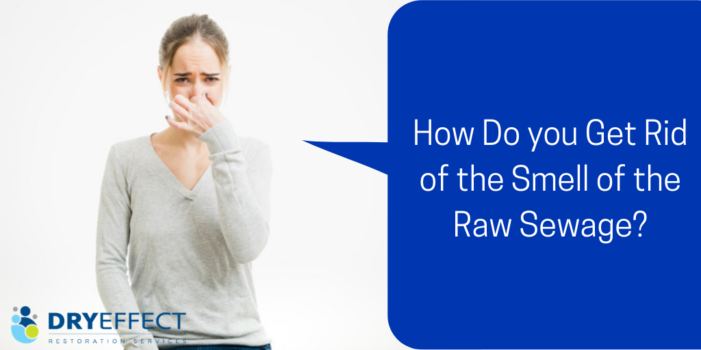 How Do you Get Rid of the Smell of the Raw Sewage?