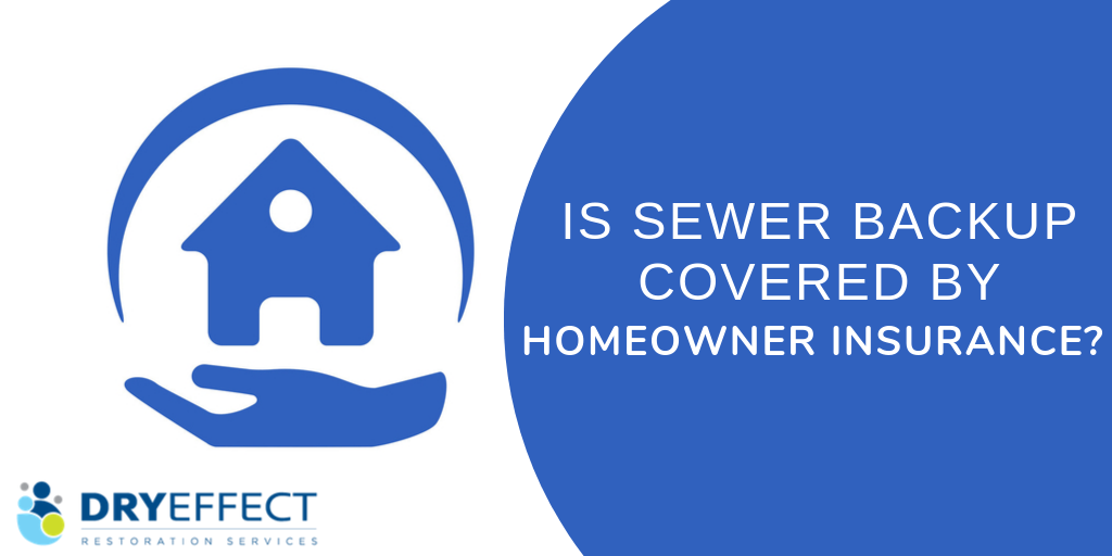 Is Sewer Backup Covered by Homeowner Insurance?