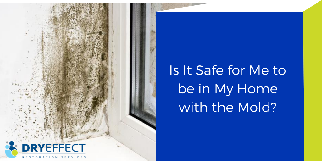 Is it Safe for Me to be in My Home with the Mold?