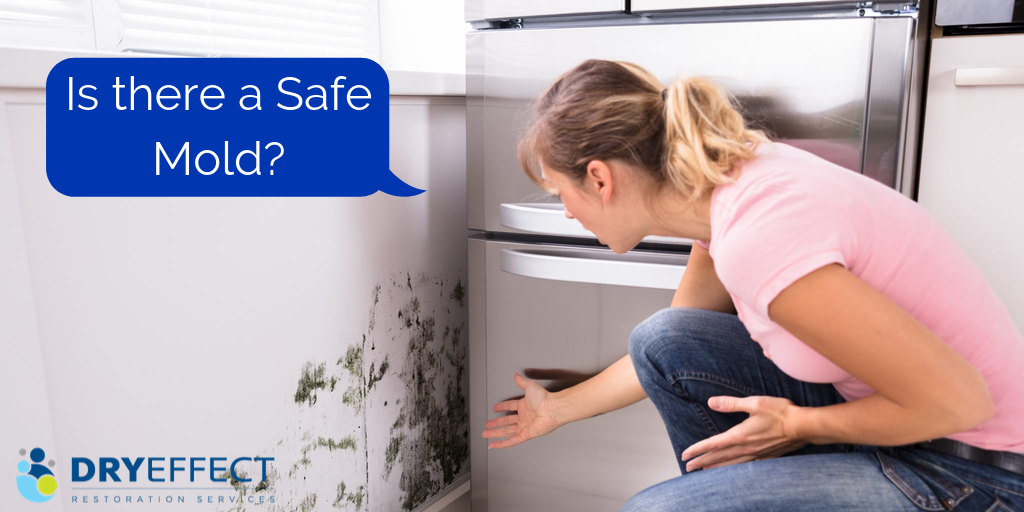 Is there a Safe Mold?