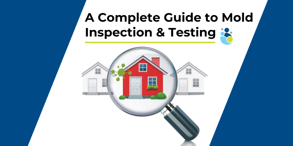A Complete Guide to Mold Inspection & Testing