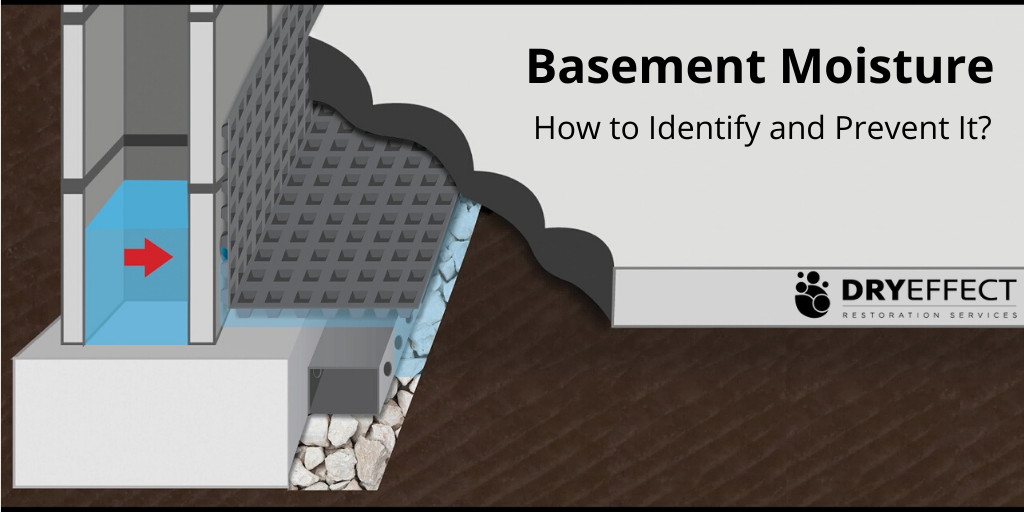 Basement Moisture - How to Identify and Prevent It?